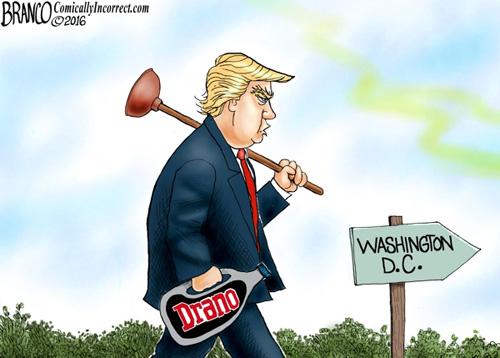 trump-drain-swamp-cartoon-draino