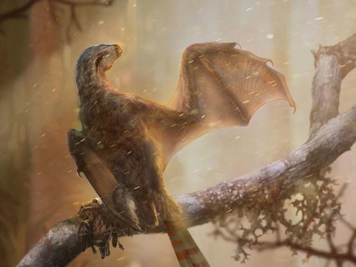 dinosaur bat