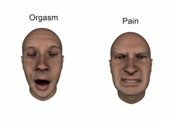 org pain